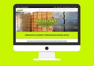 Tienda Online APIDECANT